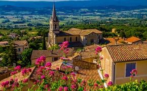 Картинка лето, солнце, деревья, цветы, горы, Франция, поля, дома, крыши, Bonnieux