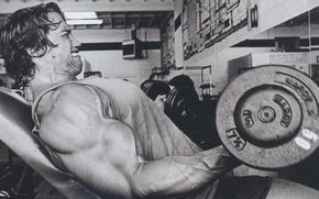 Картинка мужик, актер, Арнольд Шварценеггер, качалка, спортзал, гантели, Arnold Schwarzenegger