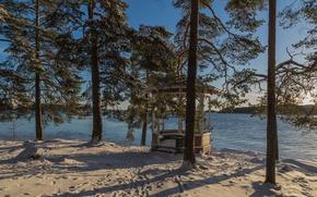 Картинка снег, озеро, ели, беседка, Финляндия, Finland, Kuopio
