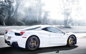 Картинка дорога, белый, деревья, скорость, white, ferrari, феррари, вид сзади, road, италия, 458 italia