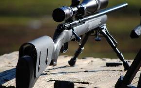 Картинка оружие, винтовка, снайперская, SAVAGE MKII