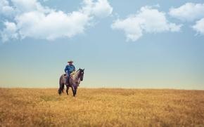 Картинка поле, небо, облака, лошадь, ковбой, ферма, сельской местности