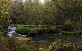 Картинка лес, деревья, ручей, Франция, водопад, лучи солнца, Jura, Franche-Comte