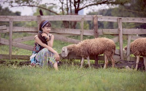 Картинка девушка, лицо, забор, овцы, восточная