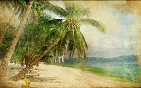 Картинка море, пальмы, люди, побережье, vintage, винтаж, старая фотография