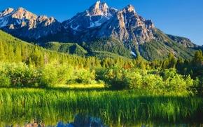 Картинка лес, горы, природа, река