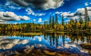 Картинка лес, небо, облака, деревья, озеро, отражение, HDR, Норвегия