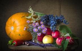 Обои перец, натюрморт, тыква, астры, фасоль, яблоки, виноград, осень, каштан