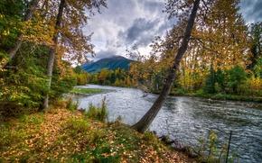 Картинка осень, небо, горы, тучи, река, дерево