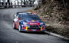 Картинка Авто, Дорога, Осень, Ситроен, Citroen, Red Bull, DS3, WRC, Rally, Ралли
