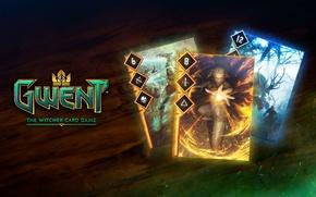 Картинка Ведьмак, The Witcher, карточная игра, CD Projekt RED, Gwent, Гвинт, card game