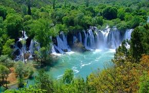 Картинка лес, деревья, природа, река, водопад