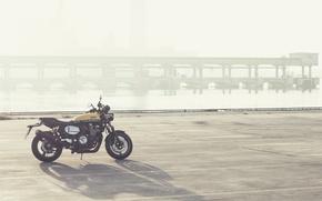 Картинка Yamaha, moto, style, yellow, industrial, sportclassic, 2016, XJR1300