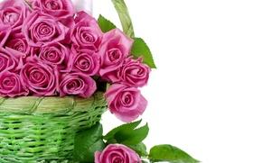 Картинка цветы, корзина, розы, букет, розовые, корзинка, красивые