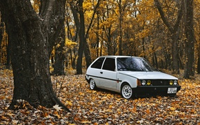 Картинка осень, листья, ZAZ, stance, 1102, tavria, таврия