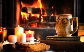Картинка dessert, bread, tea, fireplace, candle, owl, books, mug