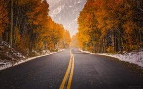 Картинка дорога, осень, краски, Колорадо, США, в Аспен