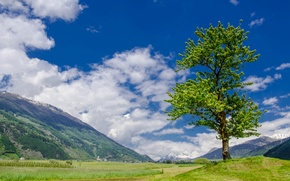 Картинка небо, трава, облака, горы, дерево, долина