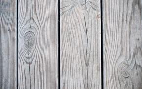Картинка wall, wood, panels