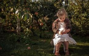 Обои яблоки, лето, сад, настроение, цыплёнок, яблоня, девочка