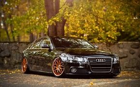 Картинка Audi, black, front