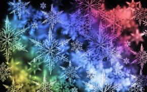 Обои цвет, снежинки, спектр