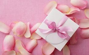 Обои petals, подарок, delicate, Valentine's Day, любовь, розы, romantic, pink, love, heart, rose