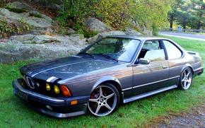 Картинка трава, деревья, камни, тюнинг, диски, спортивный, автомомбиль, BMW E24 633