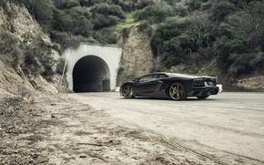 Картинка Lamborghini, Tuning, LP700-4, Aventador, Mansory, Supercar, Wheels, Rear, RDB LA Matte, Savini