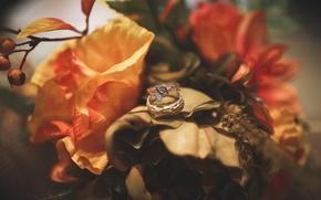 Картинка цветы, кольца, украшение