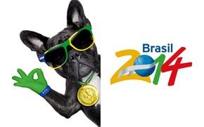 Картинка logo, dog, football, flag, funny, cool, World Cup, Brasil, FIFA, 2014