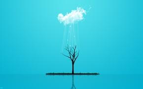 Картинка трава, стиль, отражение, дождь, дерево, минимализм, облако, grass, rain, minimalism, style, cloud, tree, 2560x1600, reflection