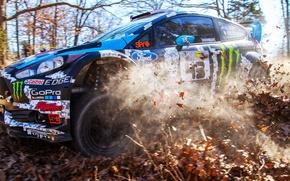 Картинка Ford, Race, Rally, Block, Кен, Fiesta, Блок, Ken, 2014, Woods, 100 Acre, RX43, Win