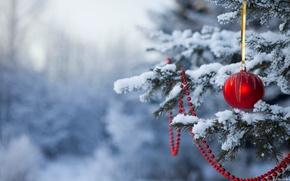 Картинка снег, новый год, шар, рождество, ёлка, christmas