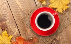 Картинка осень, чашка, клён, autumn, leaves, cup, coffee, fall, осенние листья, maple