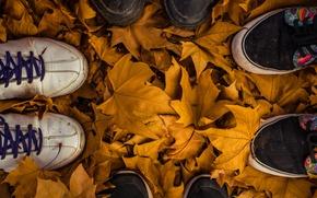 Картинка autumn, leaves, fall, feet