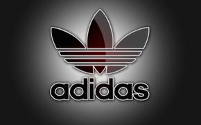 Картинка цвета, свет, спорт, логотип, тени, серый фон, adidas, фирма