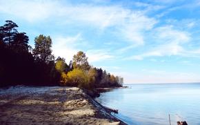 Картинка песок, море, осень, лес, небо, вода, деревья, река, листва