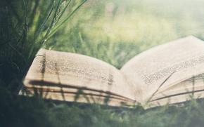 Картинка белый, трава, листья, ретро, буквы, настроение, книги, листы, книга, буква, слова, фраза, слово, страницы, фразы, …