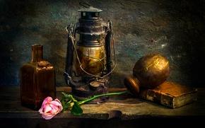 Картинка Love-lorn, пыль, лампа, книга, роза