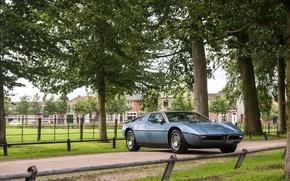 Картинка Maserati, Ретро, Тюнинг, Автомобиль, Italdesign, 1971-78, Bora Worldwide, (AM117)