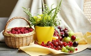Картинка цветы, вишня, малина, стол, корзина, яблоки, ягода, горшок, натюрморт, крыжовник, черешня, скатерть, костяника