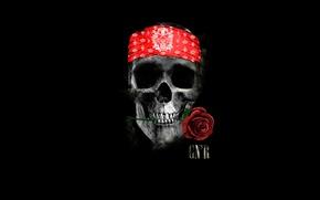 Картинка роза, череп, повязка