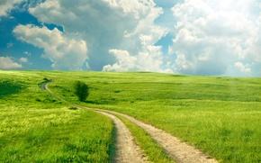 Картинка дорога, зелень, поле, лето, небо, трава, облака