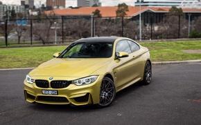 Обои фары, капот, передок, авто, Competition Package, Coupe, M4, BMW