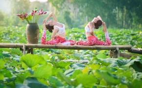 Обои лето, листья, природа, девушки, гимнастика, йога, ножки, азиатки