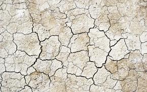 Обои сухая земля, текстура, трещины