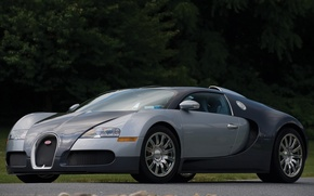 Картинка veyron, bugatti, gray