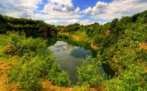 Картинка зелень, облака, ветки, озеро, Англия, кусты, Lancashire