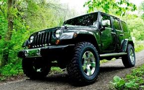 Картинка дорога, лес, Джип, автомобиль, Wrangler, Jeep, деревья., повышенной, проходимости, полноприводной, 4-D, Ранглер